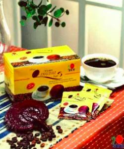ganoderma kave